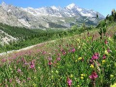 ベニの谷も花が満開でした。良く晴れて、トレッキング日和でした。