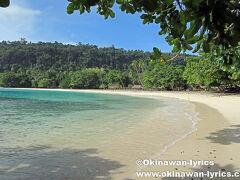 サント島で一番美しいと云われているシャンパンビーチへ。 入場料が高額なのでビックリ。 タクシー1台に付き、VT2,000! 運転手と2人だけだったので、徒歩の個人払い(1人VT500)と同料金にしてもらいました。  海に向かって左側の桟橋の辺りの岩場には、珊瑚や魚がいてシュノーケルを楽しめました。  https://www.okinawan-lyrics.com/2018/07/santo-island.html