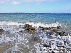 サント島でシュノーケルポイントと云えば、Million Dollar Point。 第二次世界大戦後に、米軍が大量の重機を廃棄した場所です。 残念ながら、白波が立っていて、水中は濁りまくり。涙 シュノーケルは諦めて、少しだけ散策しました。  https://www.okinawan-lyrics.com/2018/07/santo-island.html