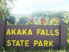 マラサダで軽くお腹を満たしたあとはアカカ滝州立公園へ。