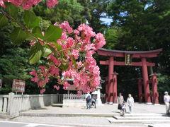 おやひこさまこと彌彦神社へ到着。 新潟屈指のパワースポットとのこと。