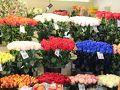 色とりどりの花が売ってあります。 薔薇の花をヘルシンキまで持っていきホテルの部屋に飾っても綺麗に咲いていました。