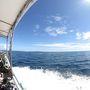 イリオモテ2018 島遊び その3 サンゴの海に漂う