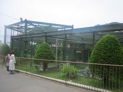 その隣には、総合水鳥舎があります。