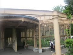 続いては、類人猿館へ。  円山動物園は、お猿さん関連の施設が多いですね。