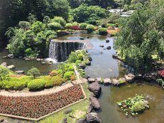 窓からは有名なニューオータニの日本庭園が見えます。