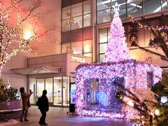 ルミナリエを(私なりに)堪能したあとは 神戸の中心街三ノ宮をぶらぶらと歩きながら ホテルまで戻りました。  これは三ノ宮駅前にあるそごうの入り口。 ピンクのイルミが可愛くて?