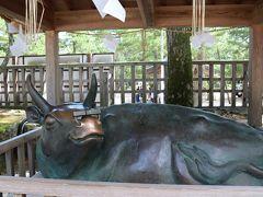 手水舎を越えると神牛(しんぎゅう)と神馬(しんめ)と像が、神馬は子宝、神牛は勉学にご利益あります♪