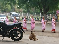 朝食取っていたら目の前をピンクの衣をまとった尼僧達が。