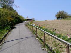 1233 禄剛崎 岬に登って行く ろっこうさきと読む