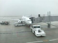 出発30分前位から急に雷雨になり、福岡空港、機能停止(汗) 雷がすごくて、落雷の可能性ありで外で作業が出来ないらしい。 わずかに雨が弱くなる瞬間を狙って、飛行機が着陸するのみ。乗客もみんなあきらめ、一気に一蘭のラーメンに行列ができていました(笑)。 1時間後に作業再開して出発~~。この飛行機、到着しただけで、まだ荷物も降ろされてなかったのです!!到着して手荷物受取場所で1時間過ごす方が大変だわ(涙)。