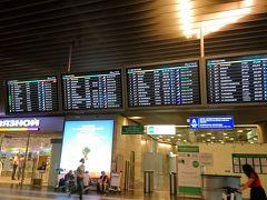 ヴヌコヴォ国際空港