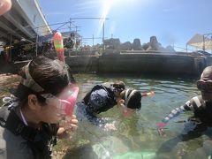 シュノーケリング:熱海マリンスポーツクラブ https://atami-marine.jp/