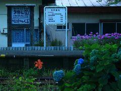 2日目 8月11日 18:00 津軽鉄道線/芦野公園駅  明朝撮影に来るのでぶらっと下見。 まだ紫陽花が咲いていた。   駐車場 無料