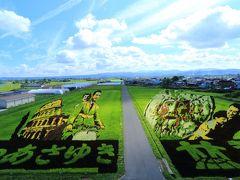 9:00 田舎館村役場/第1田んぼアート  今年のテーマは「ローマの休日」   大人 300円(時期に依る) 駐車場 無料
