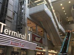おはようございます!  いよいよJGC修行の旅に出ます(^o^)  今日は羽田空港から出発♪  まずは国内線から。  JALはターミナル1からの出発です。