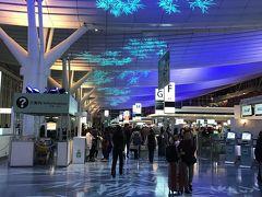 今年、2回目の羽田空港国際線ターミナル。  相変わらず綺麗ね~。