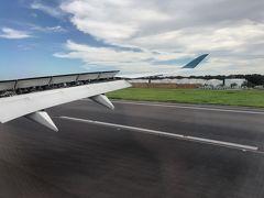 地上はかなり風が強かった様で、2回目のトライでランディング。 A350クラスの最新型の大型機でもあるんですね。 そこまで荒れてる様には感じませんでしたけど。