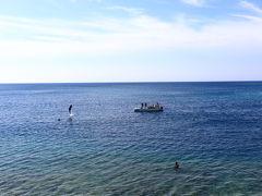 ハプニングドルフィン@ルネッサンスリゾートオキナワ 30周年記念でイルカイベントをやってた。 イルカがピョンピョンしてくれた!