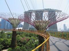 【 OCBC Skyway 】  高さ22mの吊り橋だが、怖くはない。