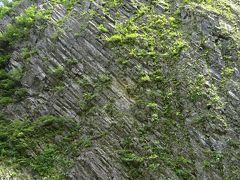見晴し所から峡谷を見ると『柱状節理』と呼ばれる切り立った壁が広がります。