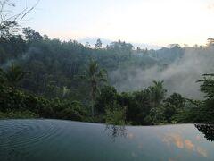 メインプールに来ました。 朝靄の中のプールを撮るためです。
