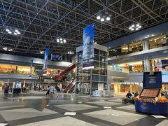 帰りは直行便が取れず新千歳空港経由。非制限エリアは約6年ぶり2回目ですが、かなり広い空港ですね。