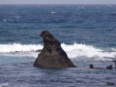 「似てはいるけど、小さいね・・」  と、ゴジラ岩を鑑賞し、