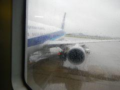 おはようございます。 旅の始まりは雨の仙台空港です。 予報より強めに降ってるな~。