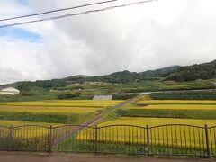 朝から降ったり止んだりしていた雨もいつの間にか上がって。 バスは田園風景の中を奈良市内へと戻ります。  (つづく)