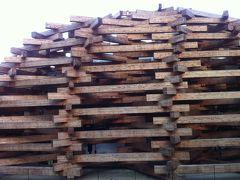 ☆箱根彫刻の森美術館☆  「ネットの森」という作品だそうです。  外形の木組は建築家手塚貴晴氏・由比氏によるもの。  断面は30センチくらいでしょうか。  小さく見えますが、かなり大きく圧巻でした。