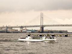 横浜ベイブリッジとシ-バス ? 横浜駅からキたシ-バスかな?