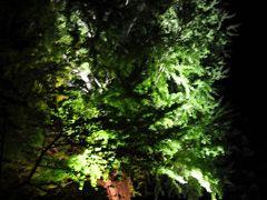 弘前城 二の丸丑寅櫓