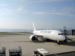 8月28日(火)旅行1日目。  今回の機材はJL0813便。チケットはマイレージで入手しました。