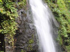 【雲井の滝】 昼食後、午後の散策を開始します。 奥入瀬渓流に戻り、高さ20mの雲井の滝からスタートです。