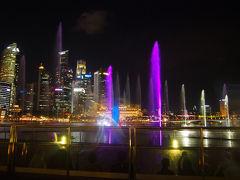 JAL修行第1回目のシンガポール  最後を飾るのはマリーナベイサンズから見る無料の噴水ショー『SPECTRA』     非常に好評だった WONDER FULL を引き継いで登場した、最新のレーザー技術にパワフルなジェット噴水、そしてビジュアルプロジェクターを駆使した美しい音楽とミズと光のシンフォニー『SPECTRA』。  シンガポールの摩天楼が目の前に広がるマリーナベイを背景に、イベントプラザで繰り広げられるマリーナベイ・サンズでしか見られない魅惑の光と水のショーをお楽しみください。ご鑑賞は完全無料です。     激しく吹き上がり、まるで生きているかのように華麗に舞い踊る噴水、夜空に浮かび上がるカラフルなビジュアルアート、刺激的なオーケストラによるサウンドや照明効果に、思わず心奪われること間違いなし。  ご家族やご友人と一緒に、15分間繰り広げられる魅力的なスペクトラの世界に浸ってください。     ショータイム: 日曜日~木曜日 : 午後8時および9時の2回上演 金曜日および土曜日 : 午後8時、9時、10時の3回上演  Please note that there will be changes in Spectra – Light & Water Show timings Monday, 16 April – 9:30pm, 10:30pm     ※マリーナベイサンズ公式HPより