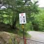 静かな苔の森を行く ~根石岳ソロ登山~