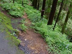 林道から黒山三滝への道