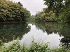 雨も降ったりやんだり、雲場池について池を一周。  ここも夫とくるのは3度目? 思い出の場所に再び一緒に来れるのは嬉しいです。