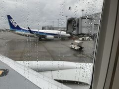 伊丹空港に着陸! 雨です・・・