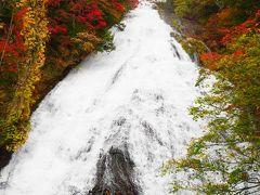湯滝も紅葉真っ盛り。