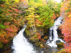 滝上から竜頭ノ滝まで下ります。