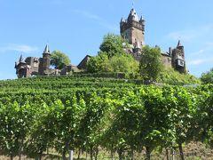 ぶとう畑の上にそびえ立つのは  ライヒスブルク城!!  ここから見上げるととてもいい感じです!!