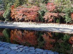 水面に映る紅葉がとっても美しい。