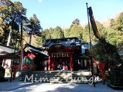 駐車場に車を止めたら、早速、箱根神社に参拝。