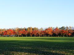 緑ヶ丘公園 グリーンパーク(400mベンチ)