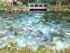 根道神社 (モネの池)