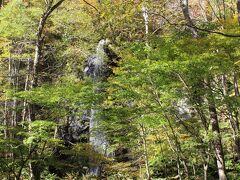 木々の中にある「白糸の滝」 銚子大滝付近には多くの滝があります。