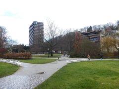公園は冬ですが、地面は青々していました。