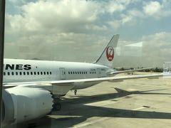 観たかった Jurassic World Fallen Kingdom を観終わらないうちに金浦国際空港に着きました。 お天気は良さそう♪